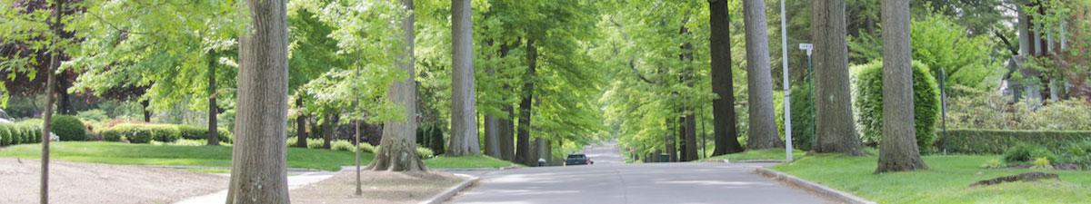 street for slideshow
