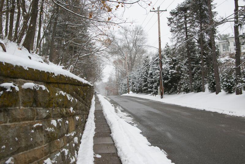 Winter - Chestnut Road