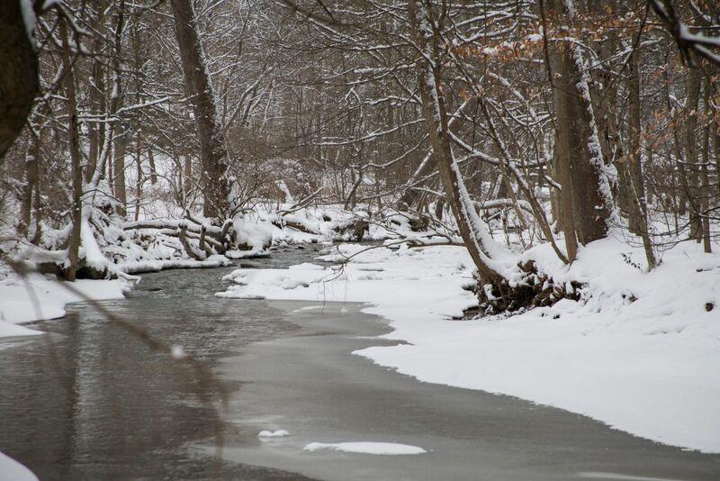 Winter - Little Sewickley Creek